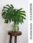 green bottle shaped glass vase... | Shutterstock . vector #1113358058
