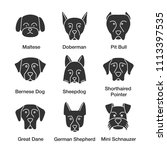 dogs breeds glyph icons set.... | Shutterstock . vector #1113397535