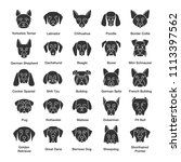 dogs breeds glyph icons set.... | Shutterstock . vector #1113397562