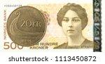20 norwegian krone coin against ... | Shutterstock . vector #1113450872
