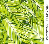 palm seamless pattern. exotic... | Shutterstock .eps vector #1113477068