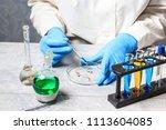 selection laboratory. breeder... | Shutterstock . vector #1113604085