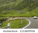 carpathian mountains  romania   ...   Shutterstock . vector #1113605936