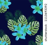 vector illustration of tropical ... | Shutterstock .eps vector #1113693392