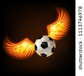 soccer ball with burning wings... | Shutterstock .eps vector #1113746978