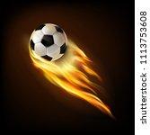 flying soccer ball.mesh.this... | Shutterstock .eps vector #1113753608