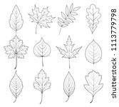 vector set of autumn leaves.... | Shutterstock .eps vector #1113779798