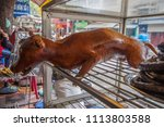hanoi  vietnam   28th march... | Shutterstock . vector #1113803588