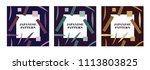 leaf template vector in... | Shutterstock .eps vector #1113803825