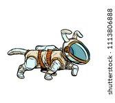 pet dog astronaut. pop art... | Shutterstock .eps vector #1113806888