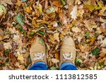 Autumn Leaf With Single Male...
