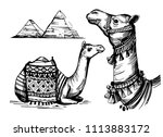 sketch of camel. hand drawn... | Shutterstock .eps vector #1113883172