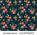 elegant pattern in small... | Shutterstock .eps vector #1113978692
