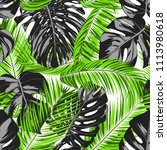 vector monstera and palm leaves.... | Shutterstock .eps vector #1113980618