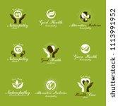 homeopathy creative symbols...   Shutterstock . vector #1113991952