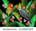 vector painting with australian ... | Shutterstock .eps vector #1114007045