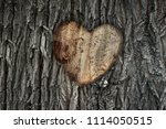 Heart On A Tree. Cuttings From...