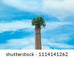 tree up on the chimney  chimney ... | Shutterstock . vector #1114141262