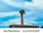 tree up on the chimney  chimney ... | Shutterstock . vector #1114141265