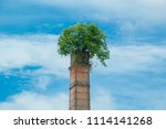 tree up on the chimney  chimney ... | Shutterstock . vector #1114141268