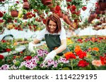 redhead young woman working in... | Shutterstock . vector #1114229195