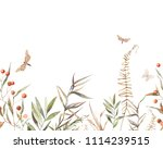 watercolor vintage herbs and... | Shutterstock . vector #1114239515