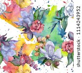 tropical colorful bouquet.... | Shutterstock . vector #1114243952