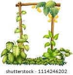 a mango nrtural wooden frame... | Shutterstock .eps vector #1114246202