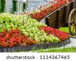 Flower Bed In The Form Of A...