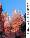 bryce canyon national park ... | Shutterstock . vector #1114381712