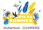 tropical flowers  jungle palm... | Shutterstock .eps vector #1114396502
