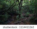 hiking to kuduremukha peak in... | Shutterstock . vector #1114411262
