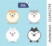 cute fluffy dog . cartoon... | Shutterstock .eps vector #1114411745