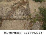 texture of asphalt with grass.   Shutterstock . vector #1114442315