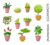 set home plants and decorative... | Shutterstock .eps vector #1114539275