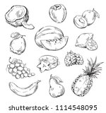 vector line drawing of various... | Shutterstock .eps vector #1114548095
