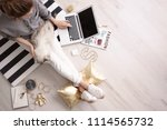 Stock photo female blogger with laptop and cat indoors top view 1114565732