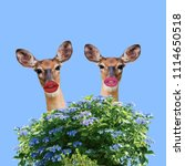 modern funny art collage. two... | Shutterstock . vector #1114650518
