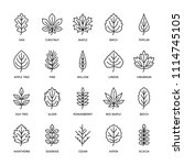 Autumn Leaves Flat Line Icons....