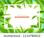 green tea leaves manu and... | Shutterstock .eps vector #1114780022