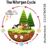 a science poster of nitrogen... | Shutterstock .eps vector #1114780928