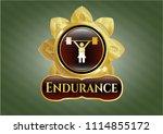 gold shiny badg golden emblem... | Shutterstock .eps vector #1114855172