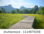 yellow flower field and wooden... | Shutterstock . vector #1114874258
