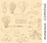 bright vector illustration of...   Shutterstock .eps vector #1114925162