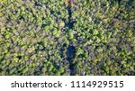 view of the forest and green... | Shutterstock . vector #1114929515