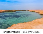 sea coast and mangroves in the... | Shutterstock . vector #1114990238