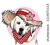 vector portrait of labrador... | Shutterstock .eps vector #1115071115