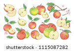 collection of botanical...   Shutterstock .eps vector #1115087282