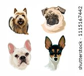 set of dogs  illustration... | Shutterstock . vector #1115167442