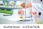 scientist working at the... | Shutterstock . vector #1115167628